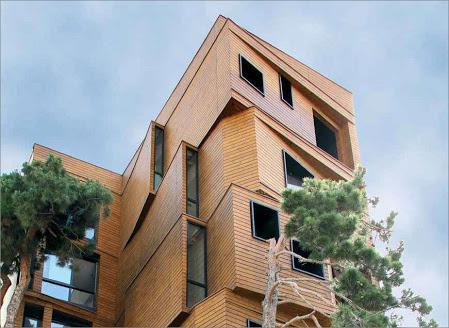 چرا از چوب ترمو به عنوان نمای ساختمان استفاده کنیم؟