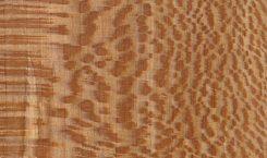 چوب نرم چیست ؟